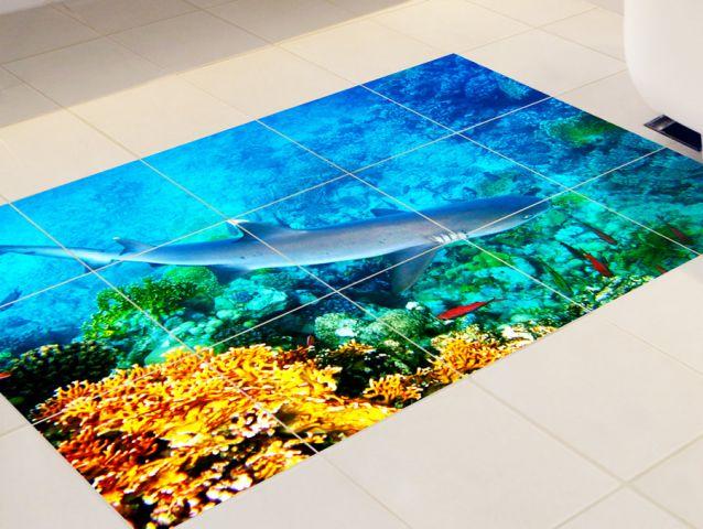 מדבקות לרצפה   כריש