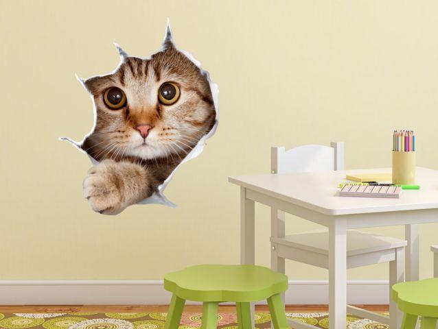 מדבקת קיר   חתול סקרן