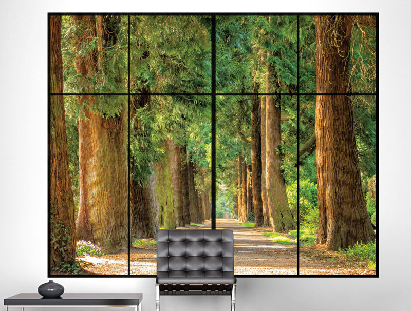 מדבקת קיר | חלון עם נוף ליער יפיפה