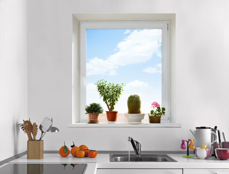 מדבקת קיר | חלון עם עציצים