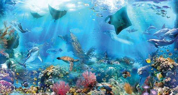 מדבקת טפט - יצורי ים