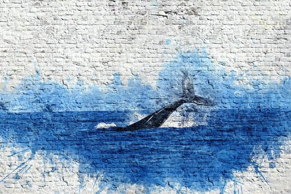 מדבקת טפט בריקים גרפיטי לויתן כחול