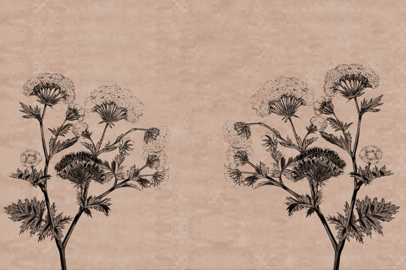 עיצוב פרחים על טקסטורה נעימה