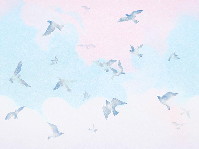 ציפורים מצויירות בשמים