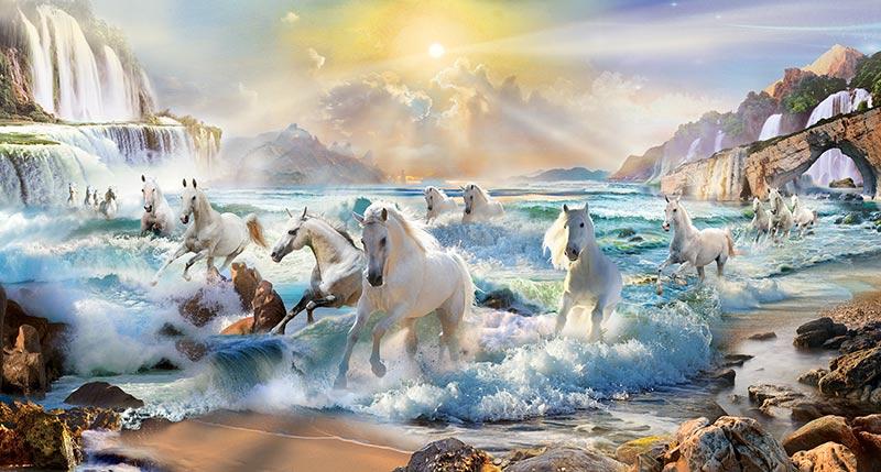 סוסים לבנים רצים מהמים