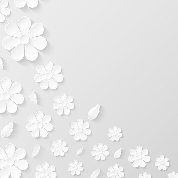 טפט - פרחים לבנים